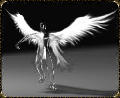 Wing of Heaven Mu Online